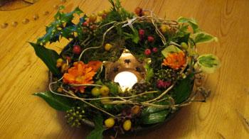 solstice-garden
